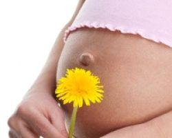 Лучшее время для беременности и рождения ребенка