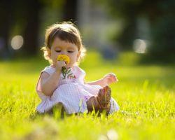 Интересные и познавательные занятия для малышей