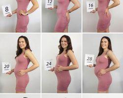 Беременность по триместрам: состояние женщины